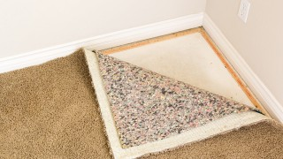 Can the Padding be Saved When the Carpet Gets Wet?