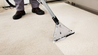 Before You Hire A Carpet Cleaner – Make Sure You Are Getting What You Expect